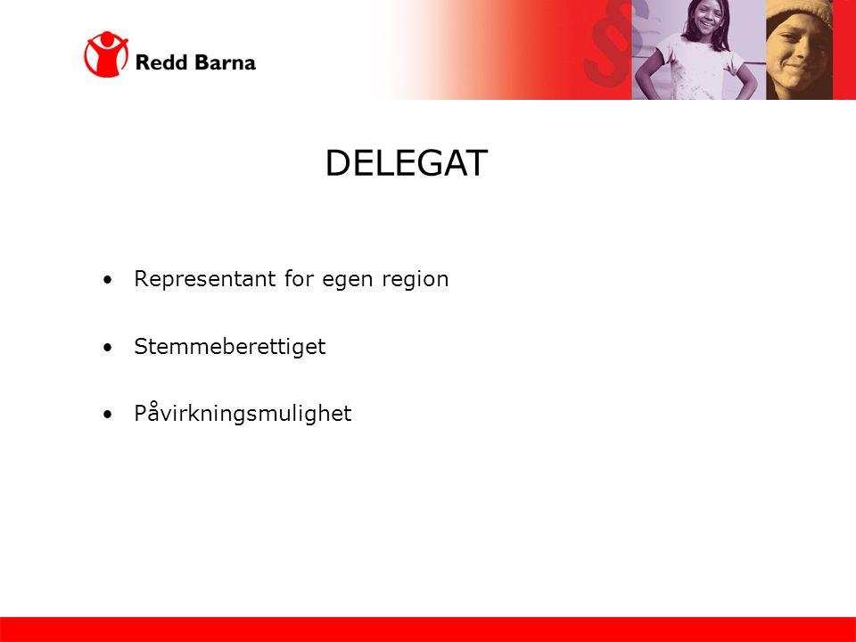 Representant for egen region Stemmeberettiget Påvirkningsmulighet DELEGAT