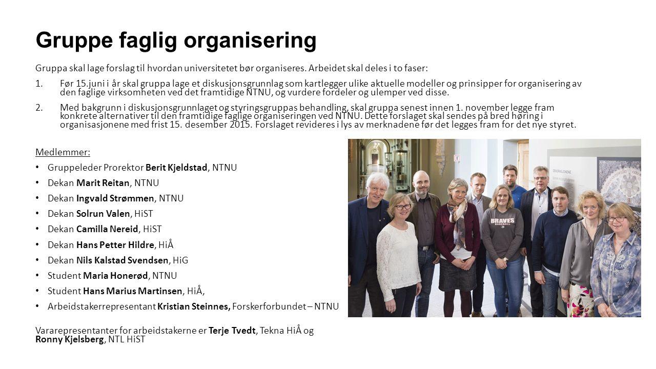 Arbeidsgrupper for faglig utvikling Under gruppe for faglig organisering er det opprettet sju arbeidsgrupper innen ulike fagområder.