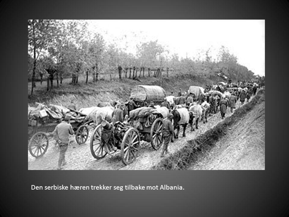 Den serbiske hæren trekker seg tilbake mot Albania.