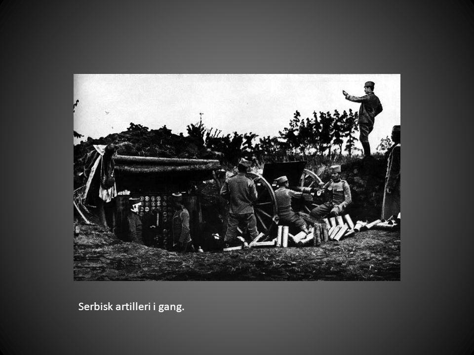Serbisk artilleri i gang.