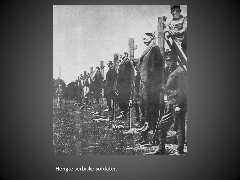 Hengte serbiske soldater.