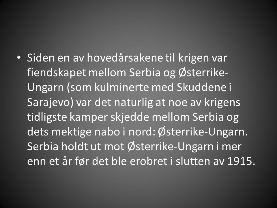 Siden en av hovedårsakene til krigen var fiendskapet mellom Serbia og Østerrike- Ungarn (som kulminerte med Skuddene i Sarajevo) var det naturlig at noe av krigens tidligste kamper skjedde mellom Serbia og dets mektige nabo i nord: Østerrike-Ungarn.