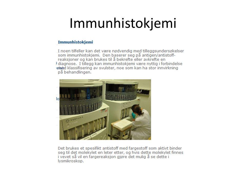 Immunhistokjemi