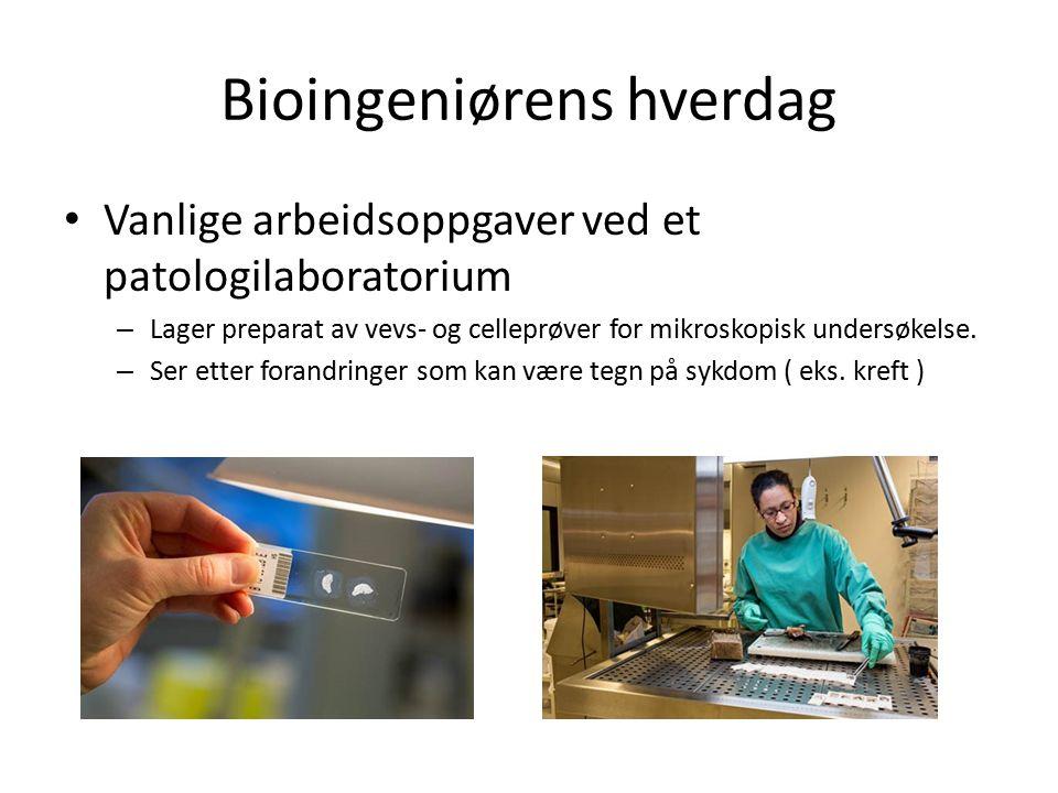 Bioingeniørens hverdag Vanlige arbeidsoppgaver ved et patologilaboratorium – Lager preparat av vevs- og celleprøver for mikroskopisk undersøkelse.