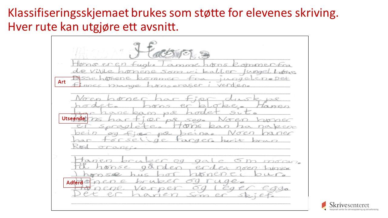 Klassifiseringsskjemaet brukes som støtte for elevenes skriving.