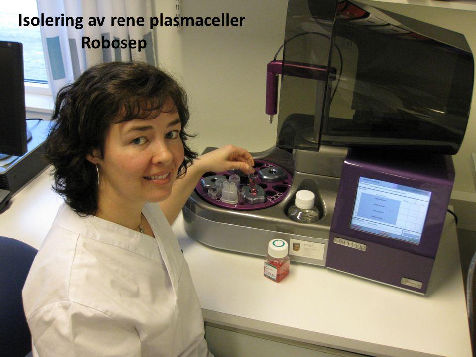 Isolering av rene plasmaceller Robosep