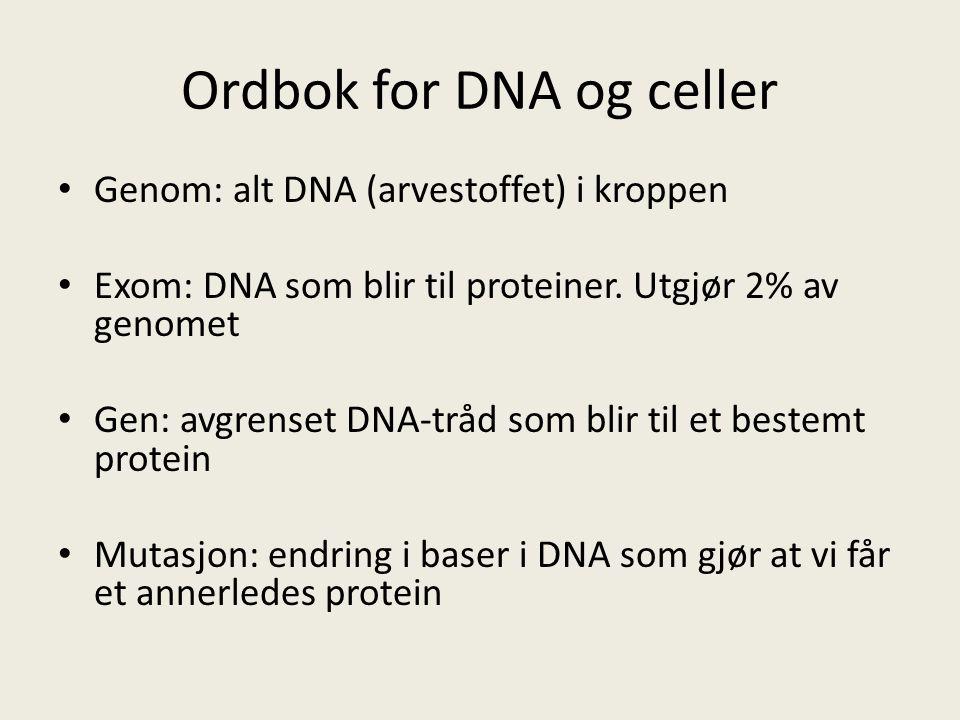 Ordbok for DNA og celler Genom: alt DNA (arvestoffet) i kroppen Exom: DNA som blir til proteiner.