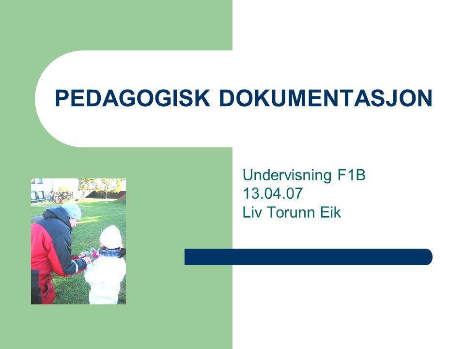 PEDAGOGISK DOKUMENTASJON Undervisning F1B 13.04.07 Liv Torunn Eik