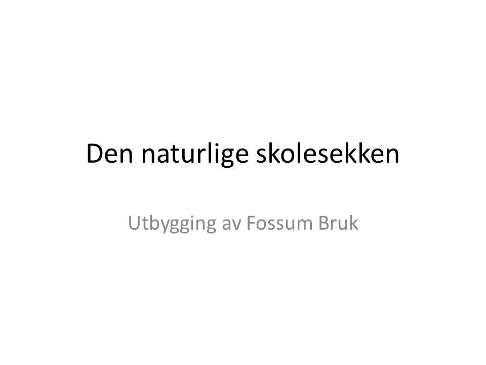 Den naturlige skolesekken Utbygging av Fossum Bruk