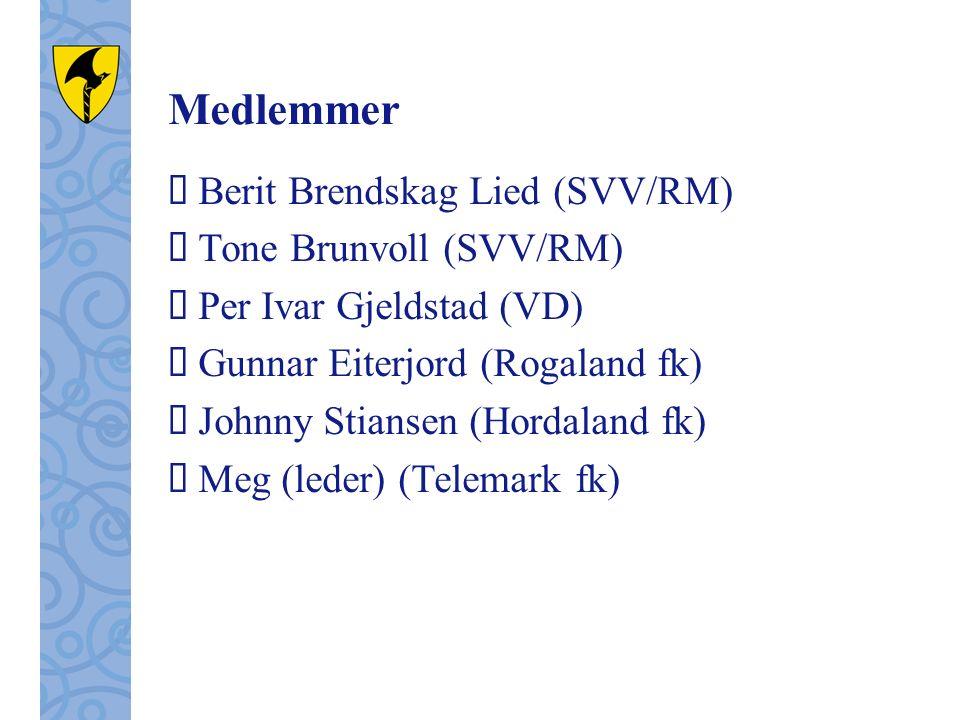 Medlemmer  Berit Brendskag Lied (SVV/RM)  Tone Brunvoll (SVV/RM)  Per Ivar Gjeldstad (VD)  Gunnar Eiterjord (Rogaland fk)  Johnny Stiansen (Hordaland fk)  Meg (leder) (Telemark fk)