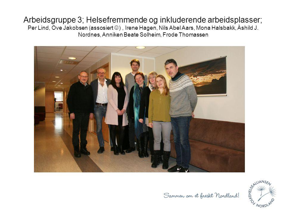 Arbeidsgruppe 3; Helsefremmende og inkluderende arbeidsplasser; Per Lind, Ove Jakobsen (assosiert ), Irene Hagen, Nils Abel Aars, Mona Halsbakk, Åshild J.