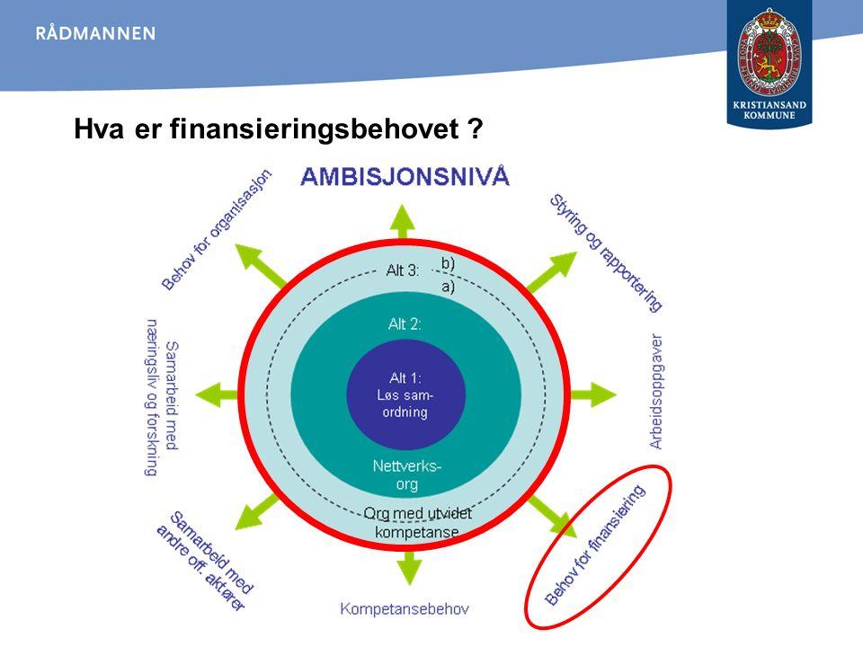 Hva er finansieringsbehovet ?