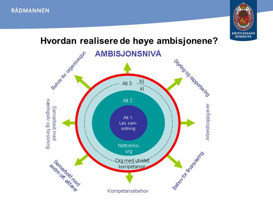 Hvordan realisere de høye ambisjonene?