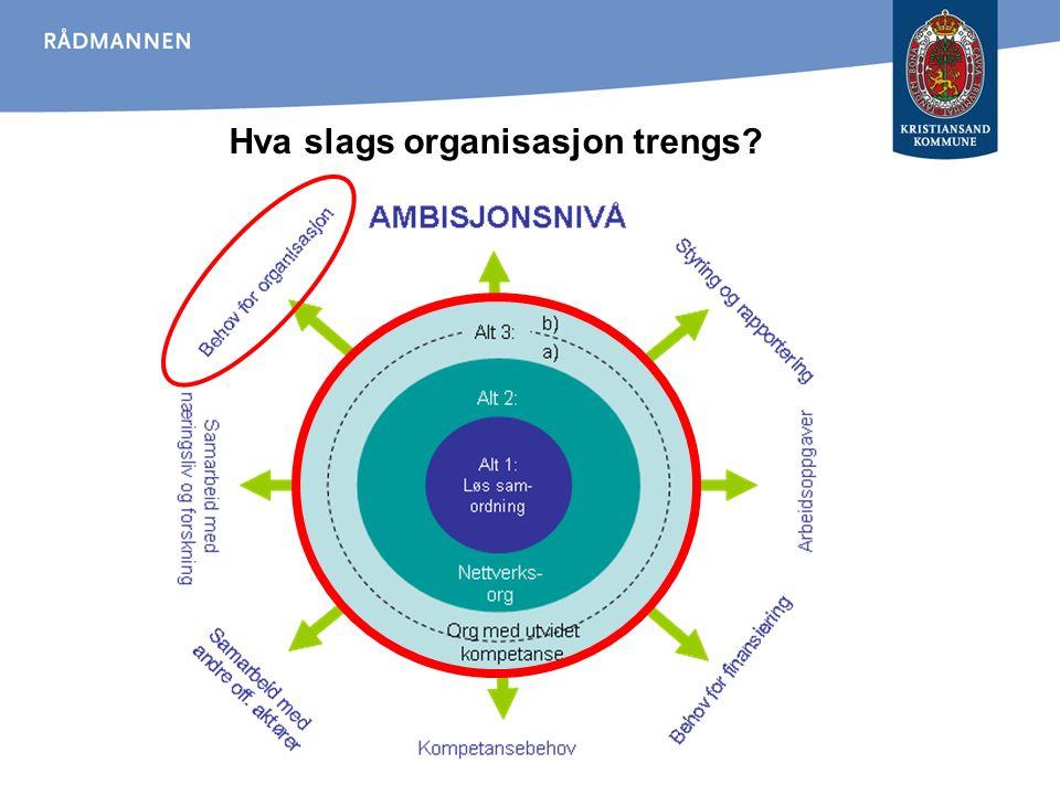 Hva slags organisasjon trengs?