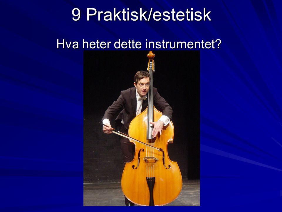 9 Praktisk/estetisk Hva heter dette instrumentet