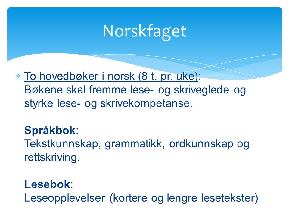  To hovedbøker i norsk (8 t. pr.