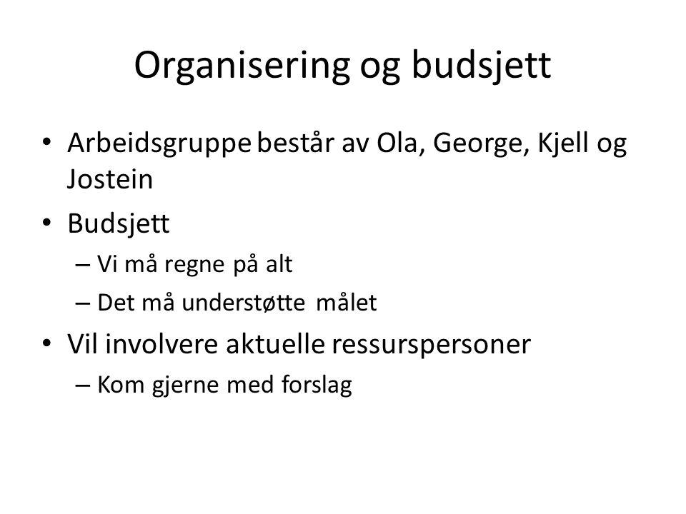 Organisering og budsjett Arbeidsgruppe består av Ola, George, Kjell og Jostein Budsjett – Vi må regne på alt – Det må understøtte målet Vil involvere aktuelle ressurspersoner – Kom gjerne med forslag