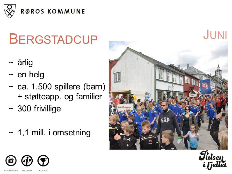 J UNI B ERGSTADCUP ~årlig ~en helg ~ca. 1.500 spillere (barn) + støtteapp.
