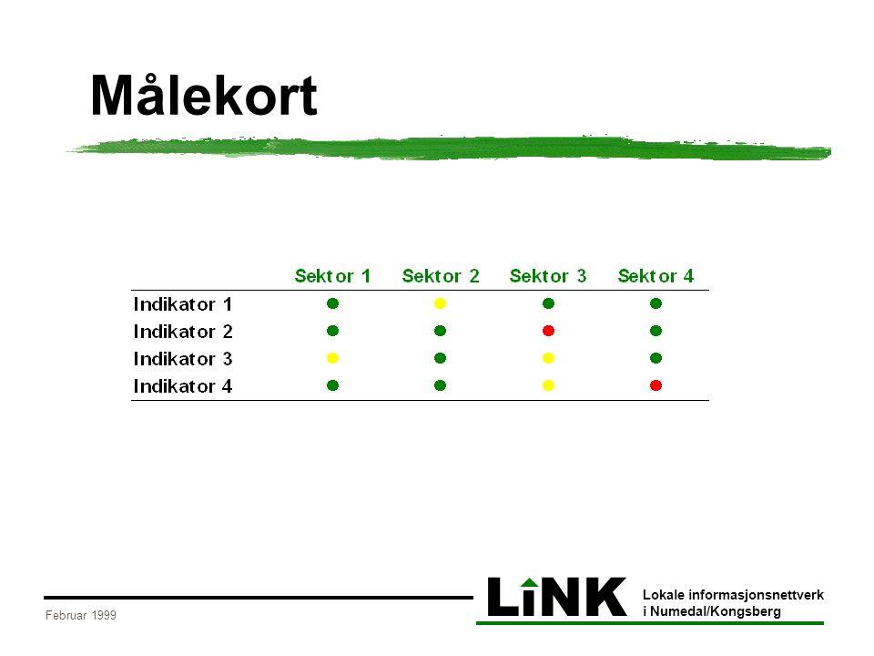 LiNK Lokale informasjonsnettverk i Numedal/Kongsberg Februar 1999 Målekort