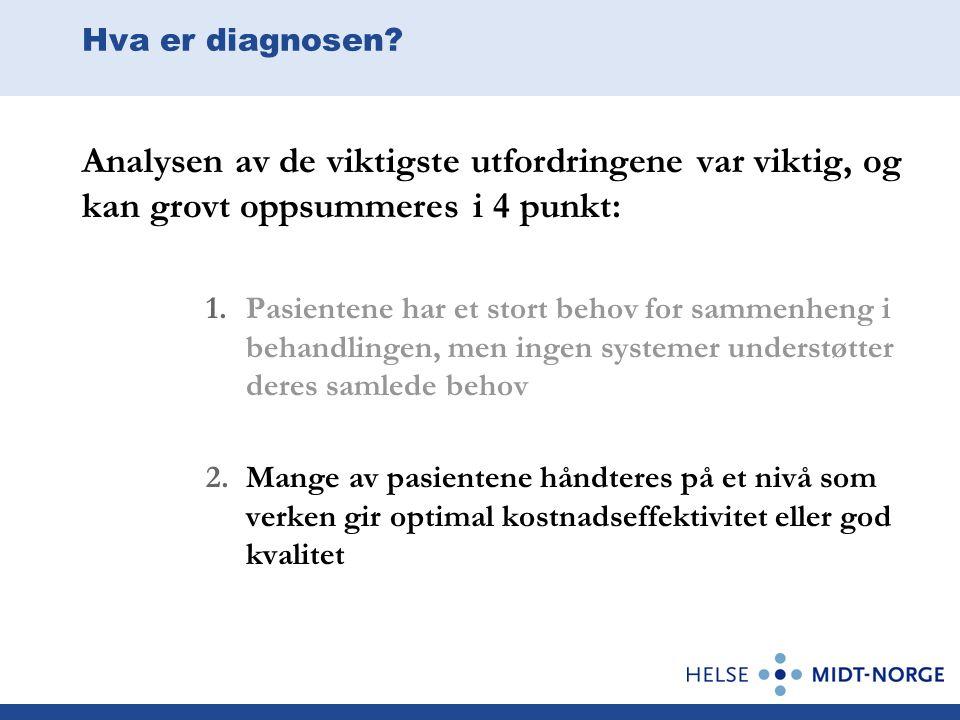 Hva er diagnosen? Analysen av de viktigste utfordringene var viktig, og kan grovt oppsummeres i 4 punkt: 1.Pasientene har et stort behov for sammenhen