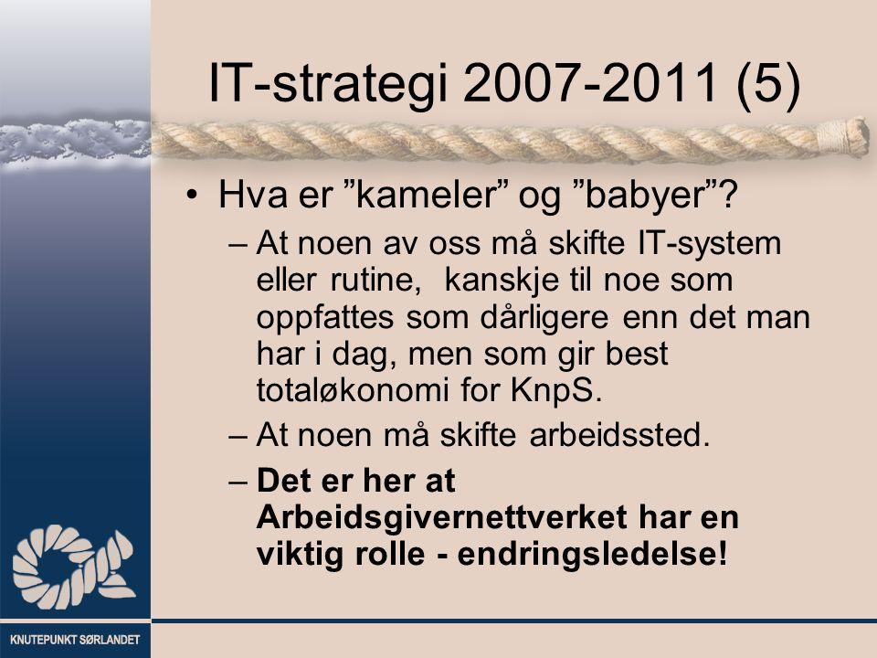 """IT-strategi 2007-2011 (5) Hva er """"kameler"""" og """"babyer""""? –At noen av oss må skifte IT-system eller rutine, kanskje til noe som oppfattes som dårligere"""