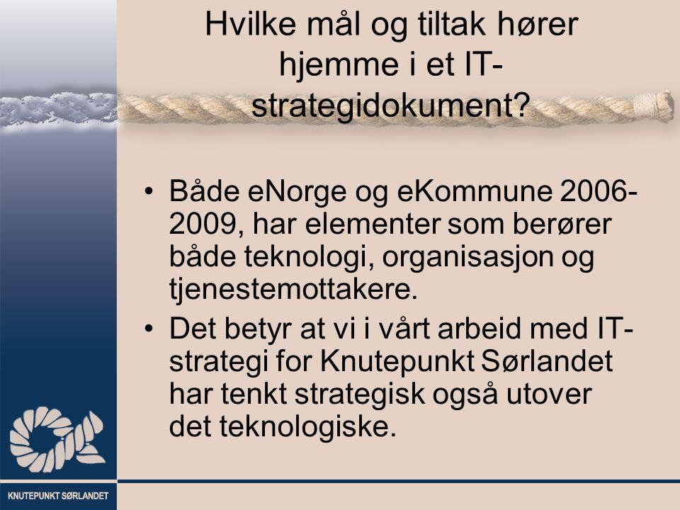 Hvilke mål og tiltak hører hjemme i et IT- strategidokument? Både eNorge og eKommune 2006- 2009, har elementer som berører både teknologi, organisasjo