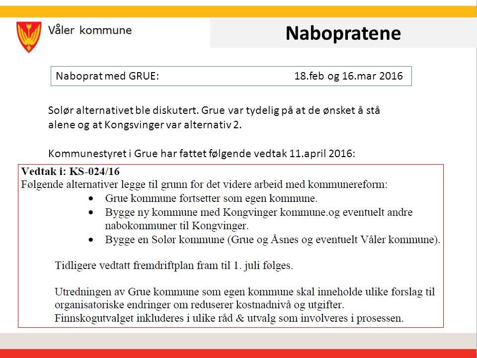 Nabopratene Naboprat med ÅSNES:21.des 2015, 18.feb og 16.mar 2016 Solør alternativet med og uten Grue ble diskutert.