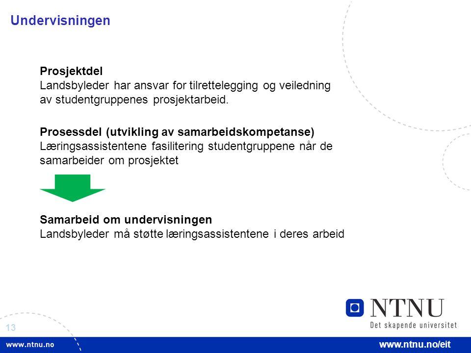 13 www.ntnu.no/eit Undervisningen Prosjektdel Landsbyleder har ansvar for tilrettelegging og veiledning av studentgruppenes prosjektarbeid. Prosessdel