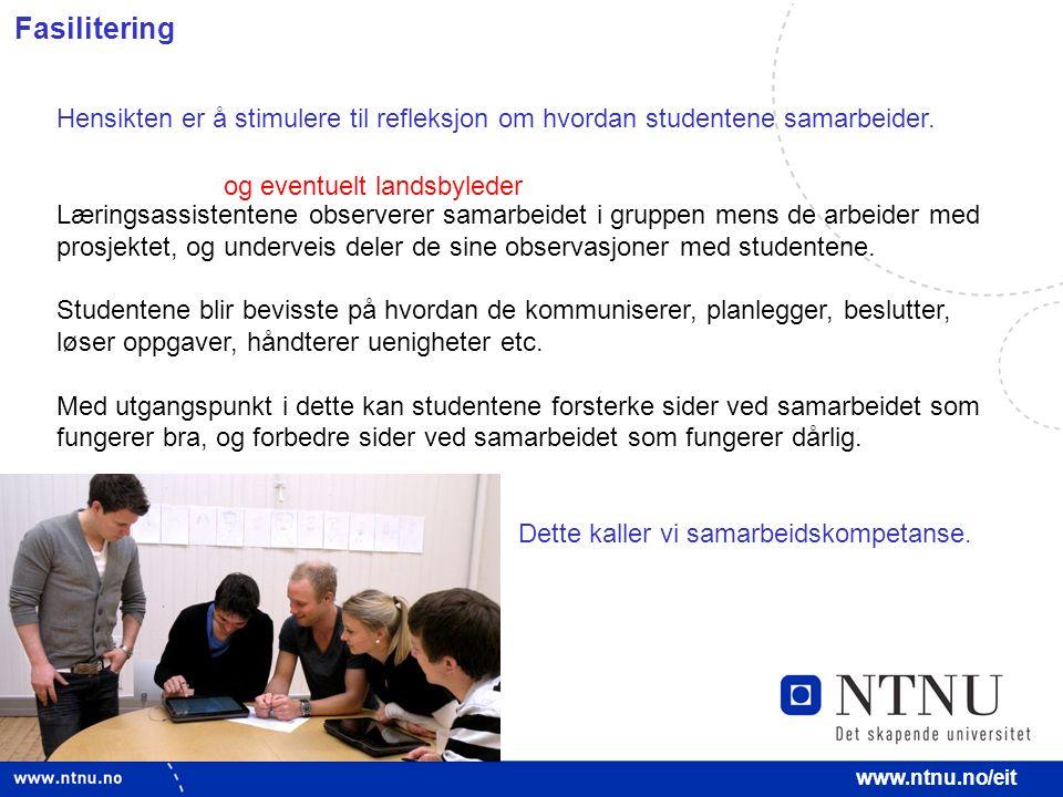 14 www.ntnu.no/eit Fasilitering Hensikten er å stimulere til refleksjon om hvordan studentene samarbeider. Læringsassistentene observerer samarbeidet