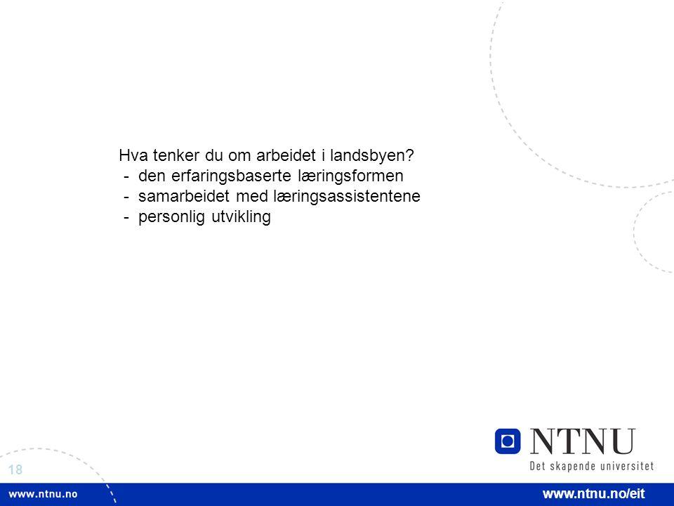 18 www.ntnu.no/eit Hva tenker du om arbeidet i landsbyen? - den erfaringsbaserte læringsformen - samarbeidet med læringsassistentene - personlig utvik