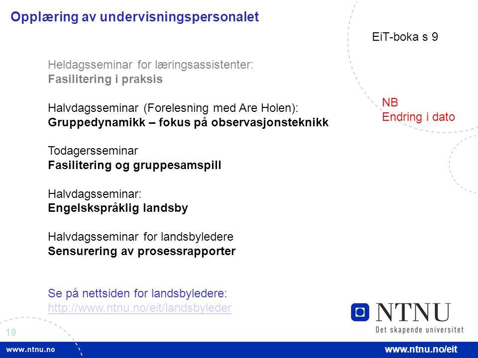 19 www.ntnu.no/eit Opplæring av undervisningspersonalet Heldagsseminar for læringsassistenter: Fasilitering i praksis Halvdagsseminar (Forelesning med