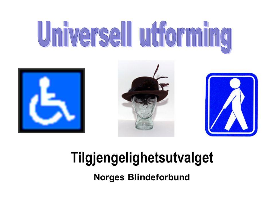 Tilgjengelighetsutvalget Norges Blindeforbund