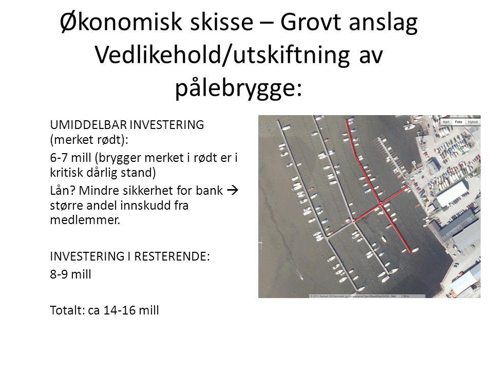 Økonomisk skisse – Grovt anslag Vedlikehold/utskiftning av pålebrygge: UMIDDELBAR INVESTERING (merket rødt): 6-7 mill (brygger merket i rødt er i kritisk dårlig stand) Lån.