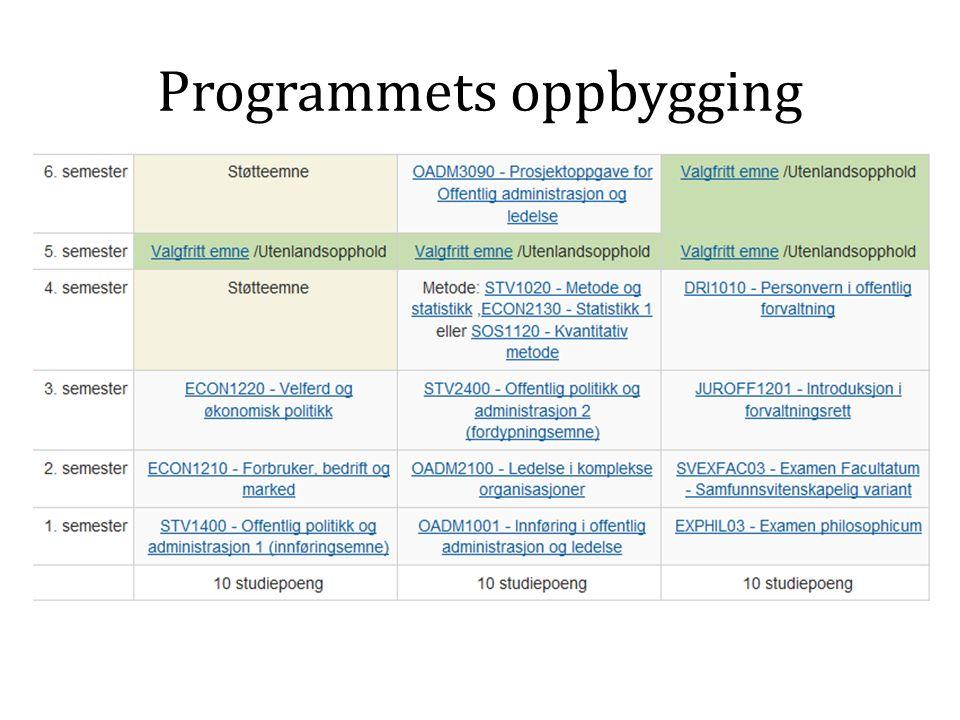 Programmets oppbygging