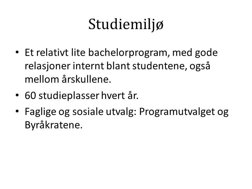 Studiemiljø Et relativt lite bachelorprogram, med gode relasjoner internt blant studentene, også mellom årskullene.
