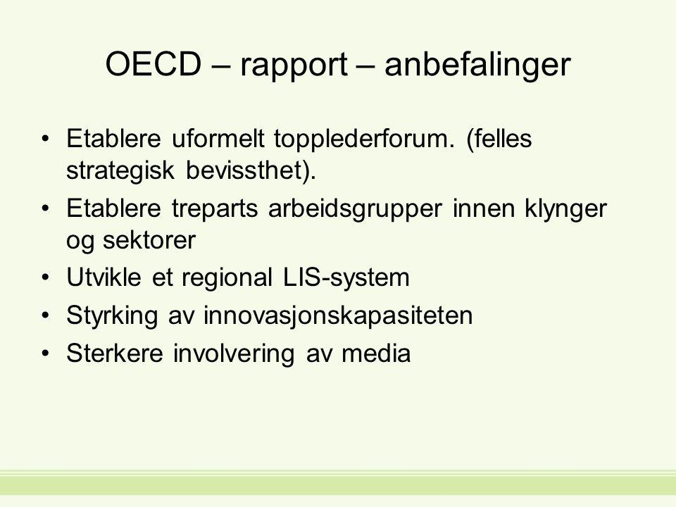 OECD – rapport – anbefalinger Etablere uformelt topplederforum.