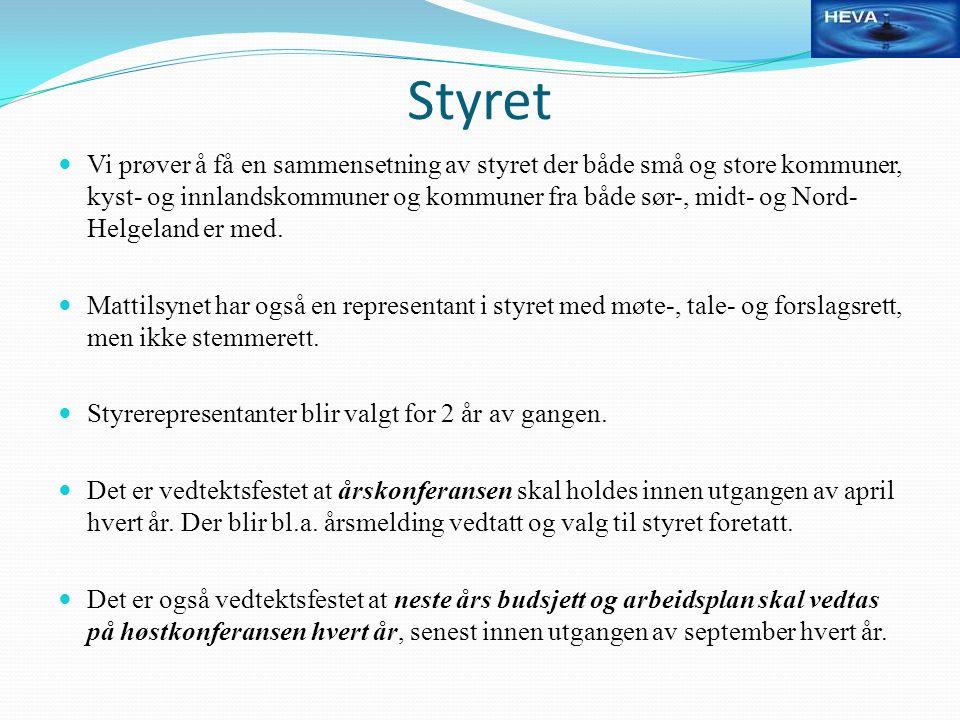 Styret Vi prøver å få en sammensetning av styret der både små og store kommuner, kyst- og innlandskommuner og kommuner fra både sør-, midt- og Nord- Helgeland er med.