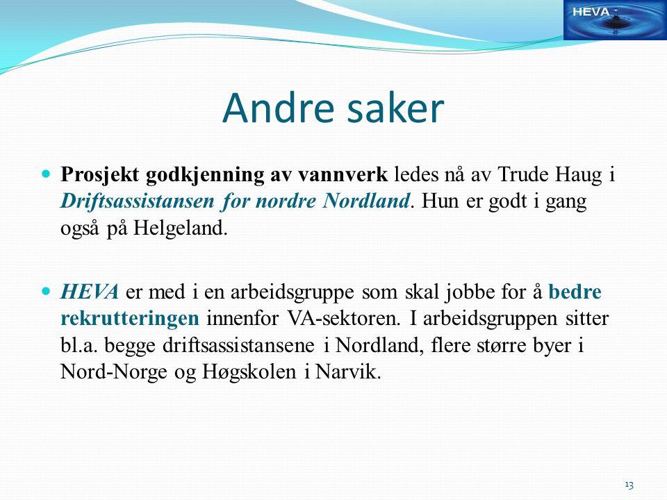 Andre saker Prosjekt godkjenning av vannverk ledes nå av Trude Haug i Driftsassistansen for nordre Nordland. Hun er godt i gang også på Helgeland. HEV
