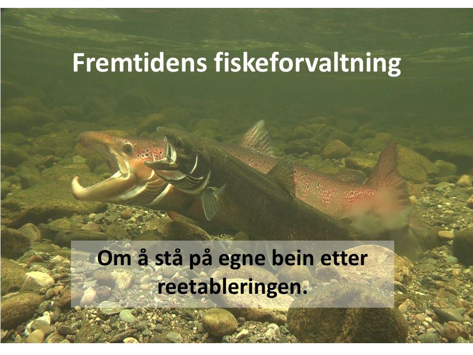 Fremtidens fiskeforvaltning Om å stå på egne bein etter reetableringen.