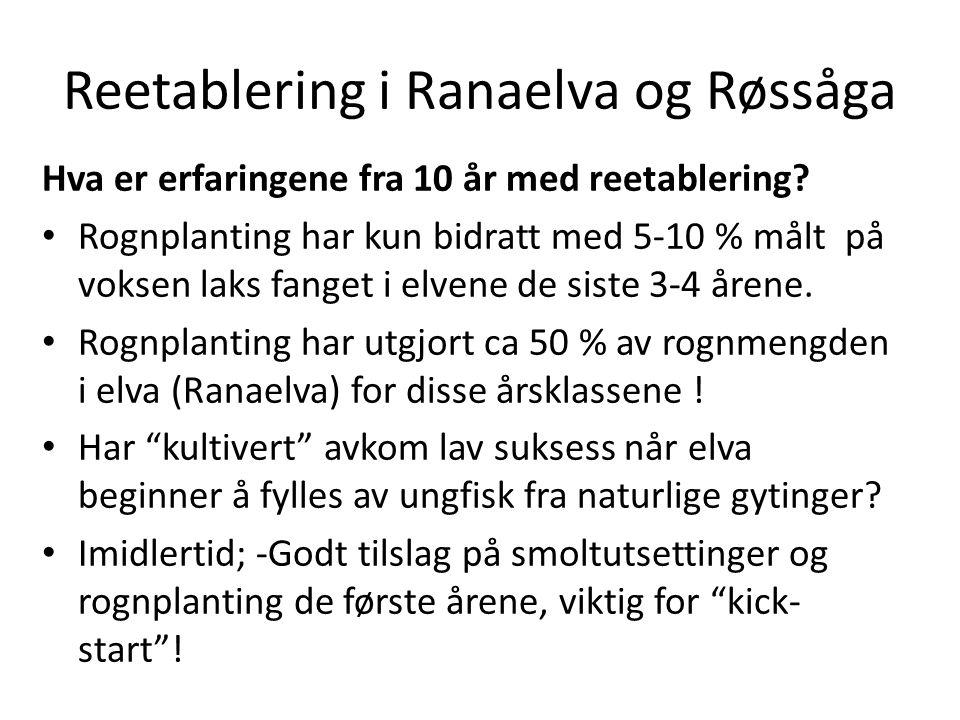 Reetablering i Ranaelva og Røssåga Hva er erfaringene fra 10 år med reetablering.