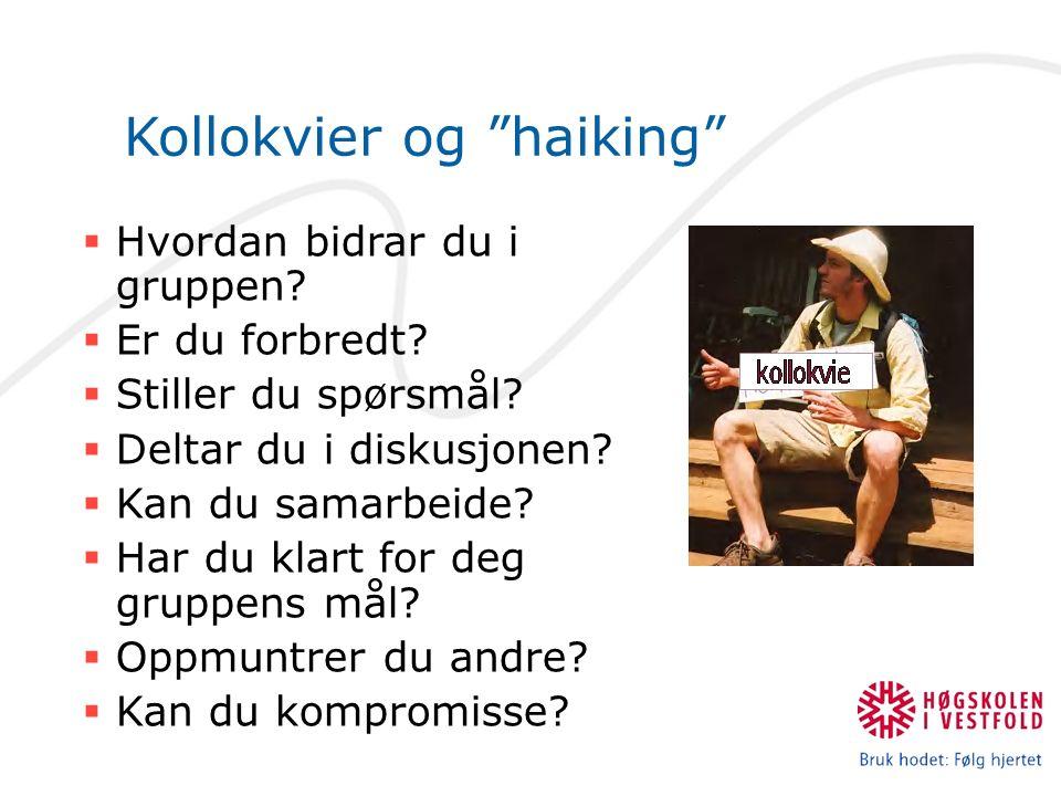 Kollokvier og haiking  Hvordan bidrar du i gruppen.