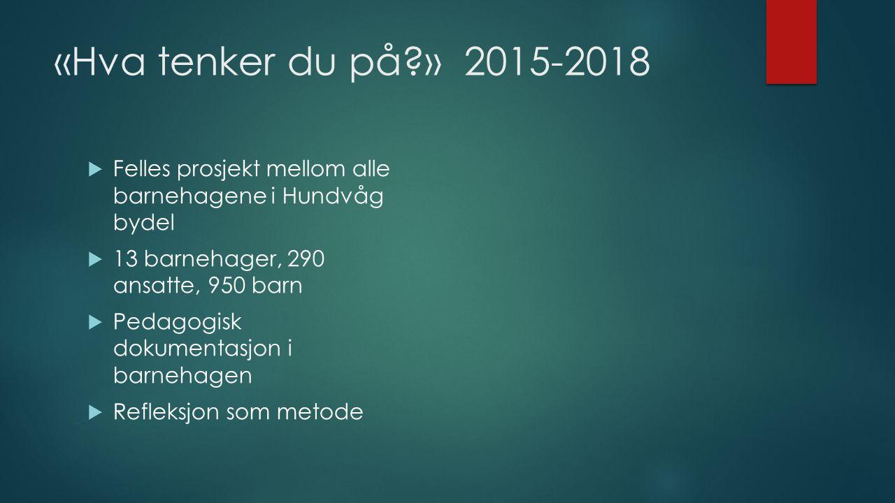 «Hva tenker du på?» 2015-2018  Felles prosjekt mellom alle barnehagene i Hundvåg bydel  13 barnehager, 290 ansatte, 950 barn  Pedagogisk dokumentas