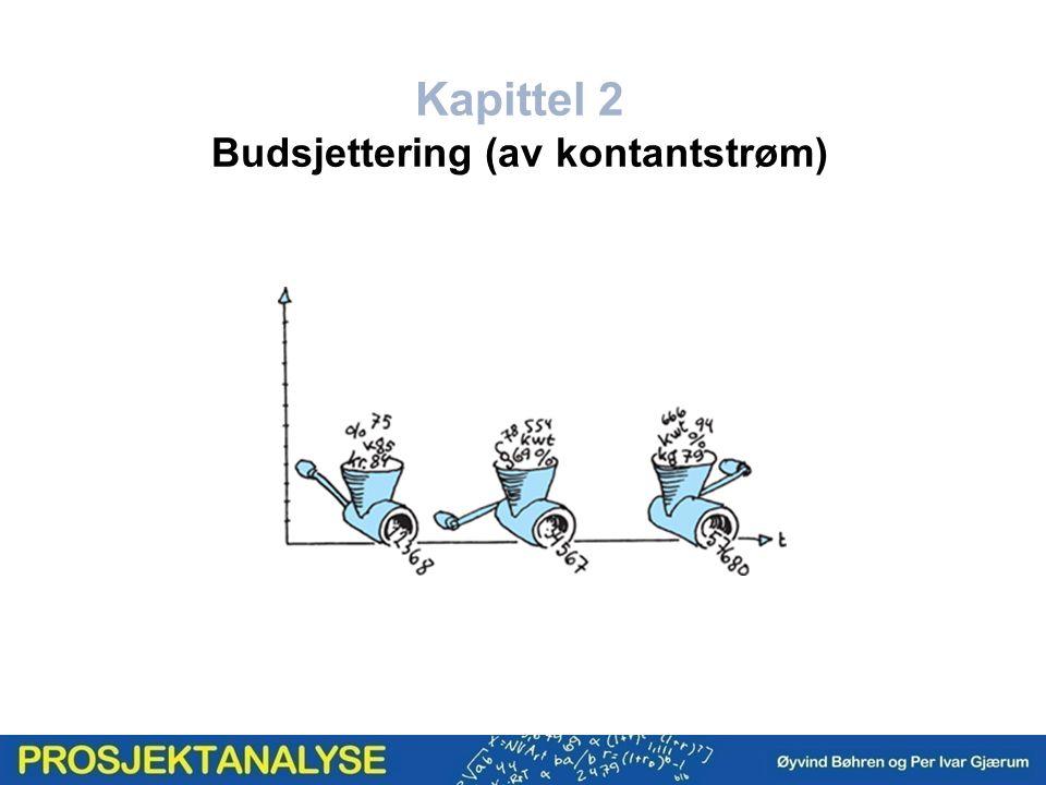 Kapittel 2 Budsjettering (av kontantstrøm)