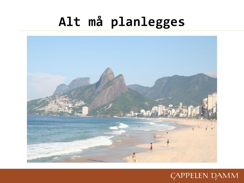 Eksempler på planer ForretningsplanerPlaner for med- arbeidersamtaler BudsjetterPlaner for ferieavvikling InnkjøpsplanerMarkedsplaner Planer for kundebesøk Prosjektplaner Ressursplaner Opplæringsplaner KampanjeplanerPlaner for firmafesten