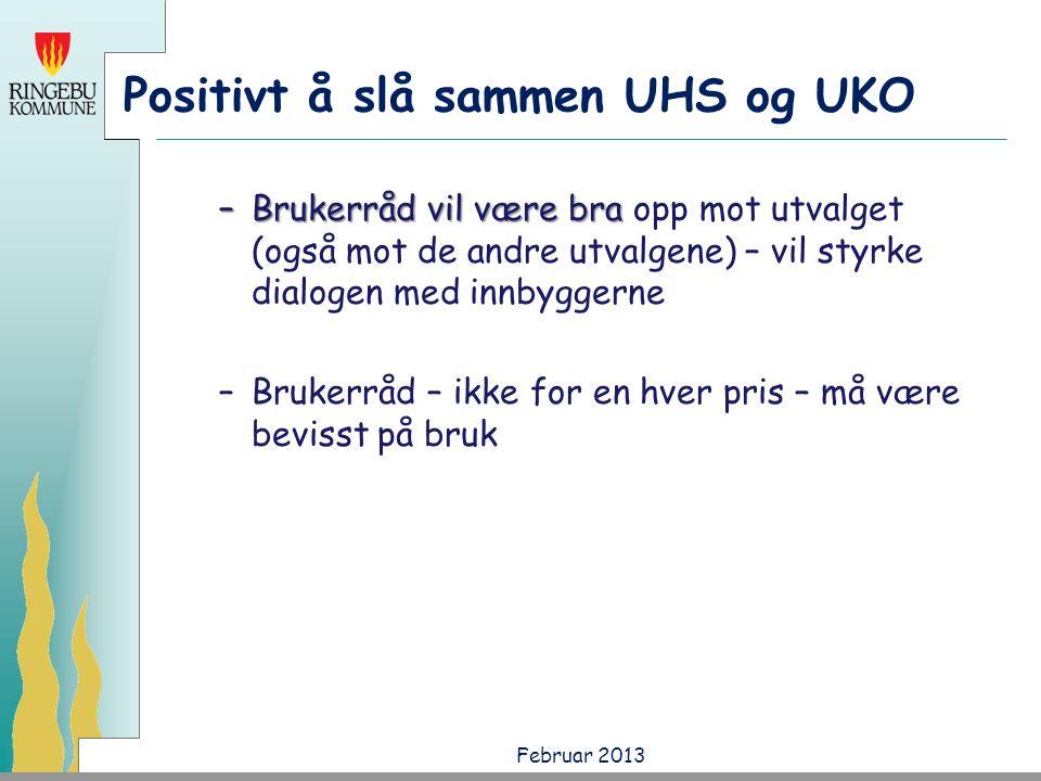 Positivt å slå sammen UHS og UKO –Brukerråd vil være bra –Brukerråd vil være bra opp mot utvalget (også mot de andre utvalgene) – vil styrke dialogen med innbyggerne –Brukerråd – ikke for en hver pris – må være bevisst på bruk Februar 2013