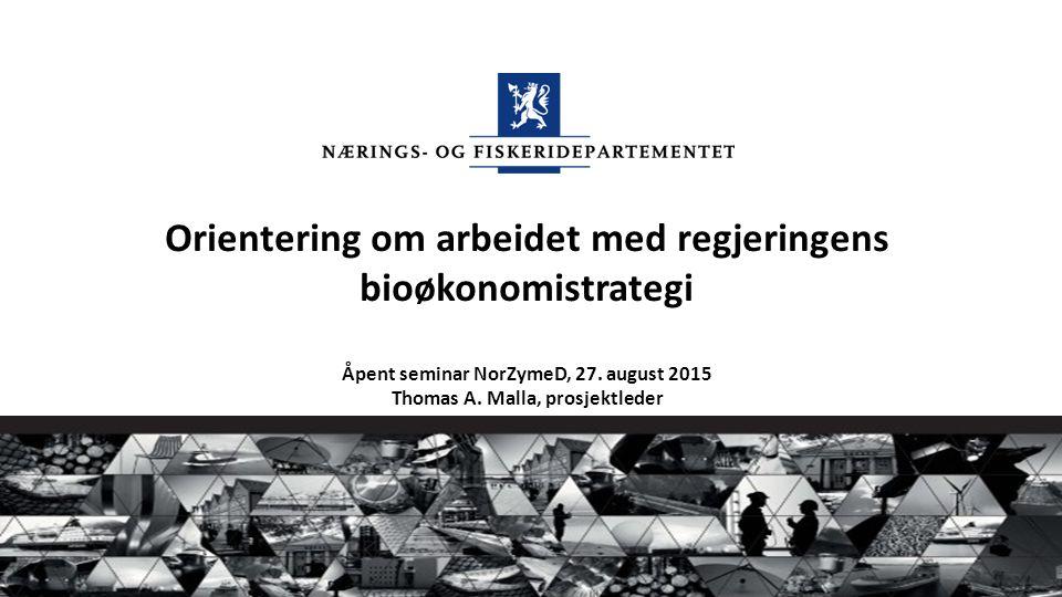 Orientering om arbeidet med regjeringens bioøkonomistrategi Åpent seminar NorZymeD, 27. august 2015 Thomas A. Malla, prosjektleder