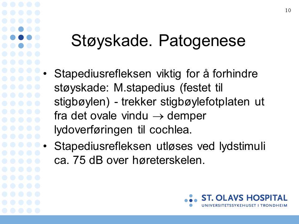 10 Støyskade.