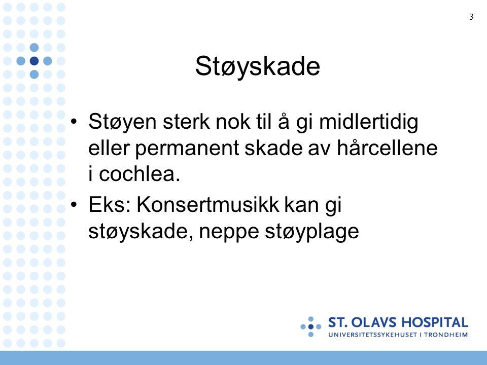 14 Støyskade.Symptomer.