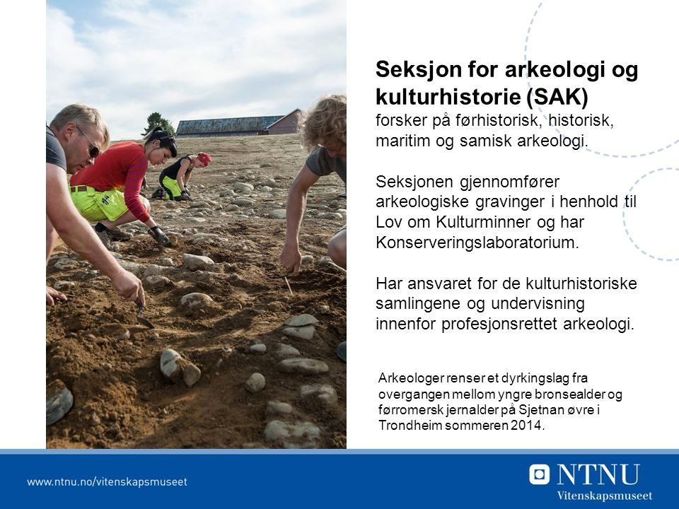 Seksjon for arkeologi og kulturhistorie (SAK) forsker på førhistorisk, historisk, maritim og samisk arkeologi.
