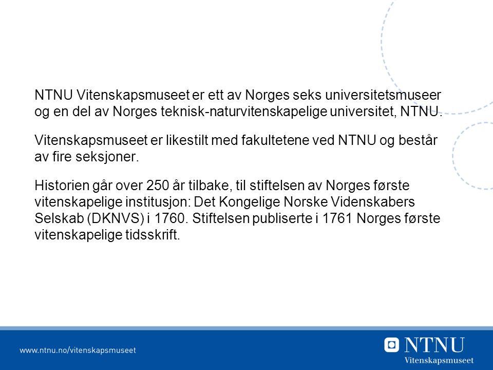 NTNU Vitenskapsmuseet er ett av Norges seks universitetsmuseer og en del av Norges teknisk-naturvitenskapelige universitet, NTNU.